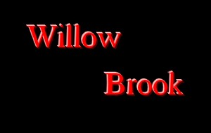 Willow Brook Place image